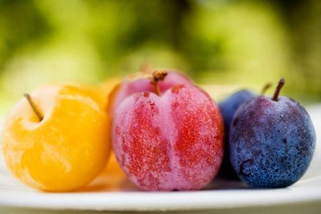 Kuru ve taze erik - cilt kalitesini korur!  Boston Tufts Üniversitesi'nde yapılan son araştırmalar, kuru eriğin yaşlanma sürecini geciktirdiğini gösteriyor. Araştırma; sık yenen sebze ve meyvelerin antioksidan değerlerini ORAC (Oksijen Radikali Emme Kapasitesi) ölçeğini kullanarak sıralamış.   Kuru erik, yüksek antioksidan değere sahip olan yaban mersini ve kuru üzümün iki katı değerle listenin başında yer almakta. Aslında kuru erik o kadar etkilidir ki, kandaki antioksidan seviyesini yüzde 25 artırır. Her gün iki tane kuru ya da taze (mevsimindeyse) erik yiyin. Güzel yıkayın fakat kabuğunu soymayın, çünkü kabuklar serbest radikallerle savaşan fitonutrient'ler bakımından çok zengindir.
